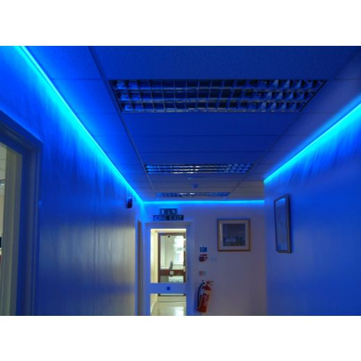 5 Metre Blue Ip65 12v Led Tape