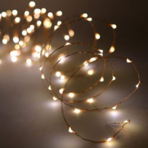 Copper Wire 20 LED Battery Fairy Lights Warm White HL129WW